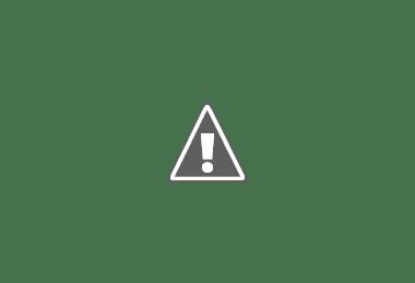 lasagne bianche ai formaggi