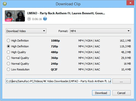 4K Video Downloader Screen