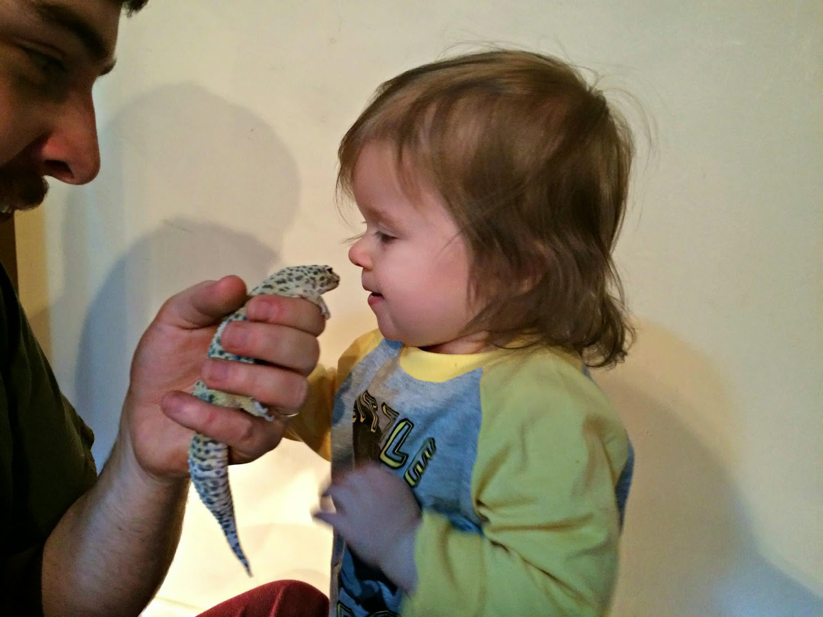 leopard gecko and baby