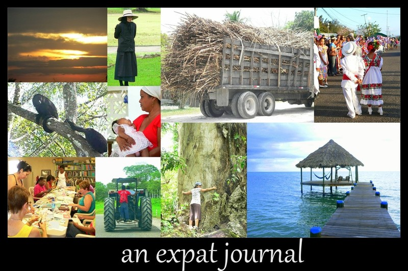 an expat journal