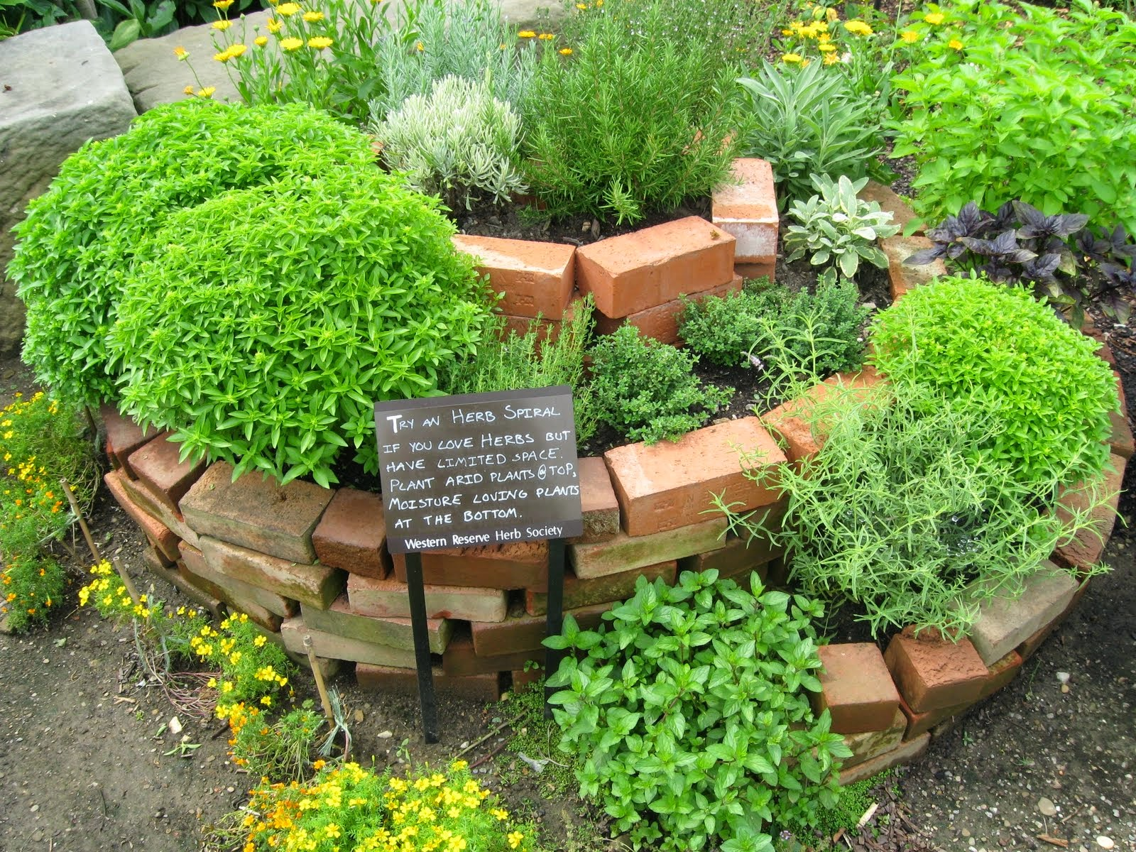 In Creating The Herb Garden, You Will Need The Container Herb Garden Ideas.  The Container Can Keep The Herb Plants For Other Plants.