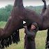 Απολαύστε ένα ξεκαρδιστικό βίντεο με φάρσες… Θα κλαίτε από τα γέλια!
