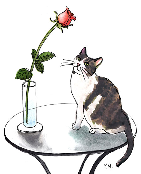 a rose and a cat by Yukié Matsushita