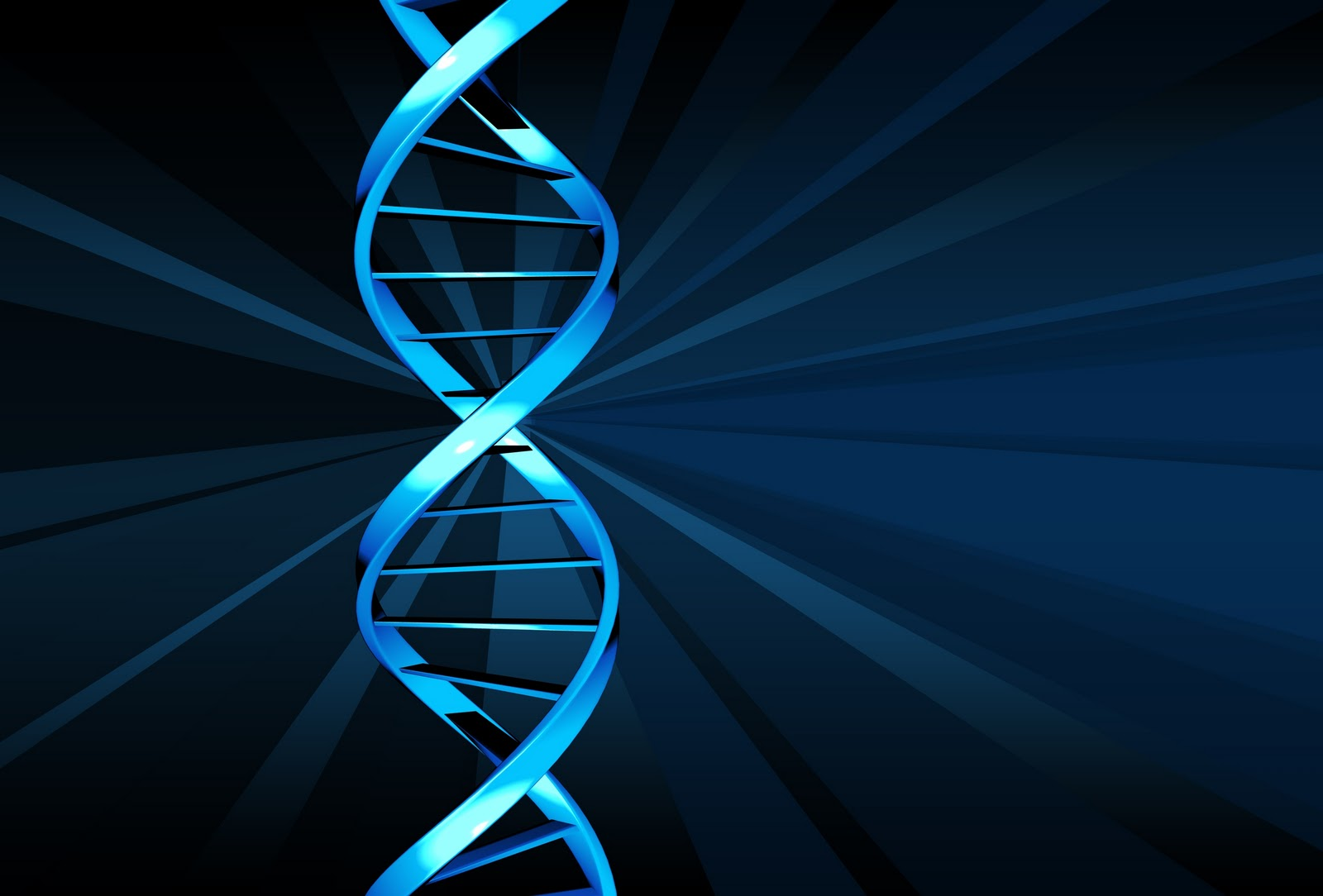 how to find biological father through dna