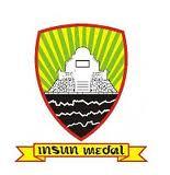 Insun Medal