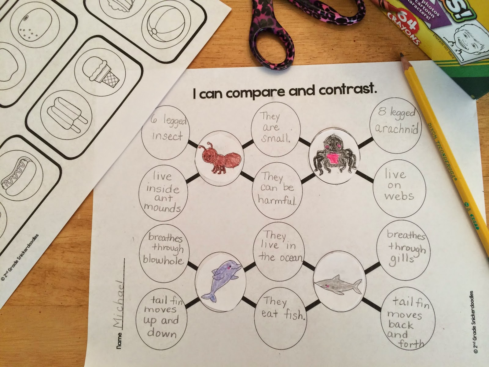 2nd grade snickerdoodles comparing and contrasting for What does contrast do