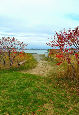 Webb-Memorial-State-Park-Weymouth-MA-Travel-the-East