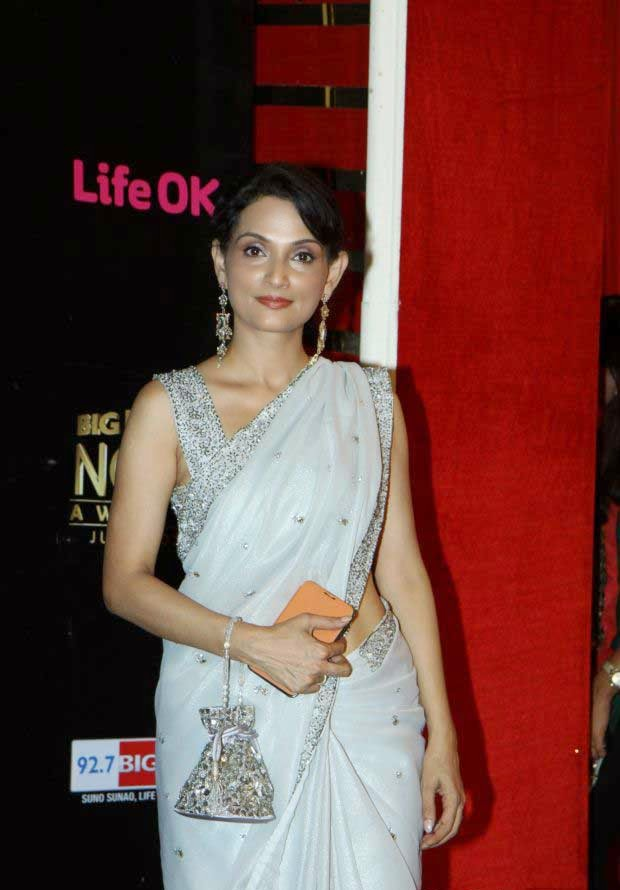 Celeb At Life Ok Now Awards 2014