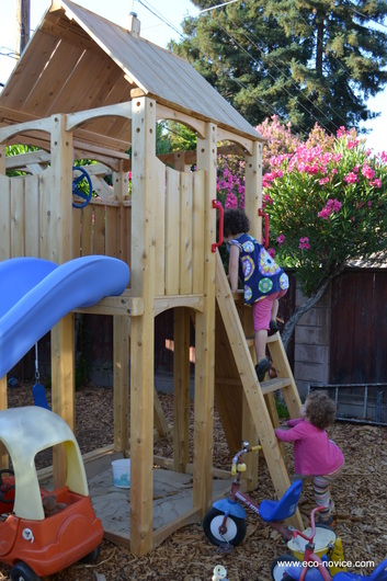 Why I Chose A CedarWorks Frolic Play Structure