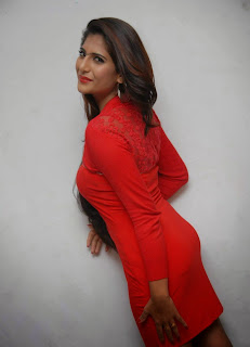 Neha Saxena Picture Gallery in Red Dress at Dandu Film Press Meet ~ Celebs Next
