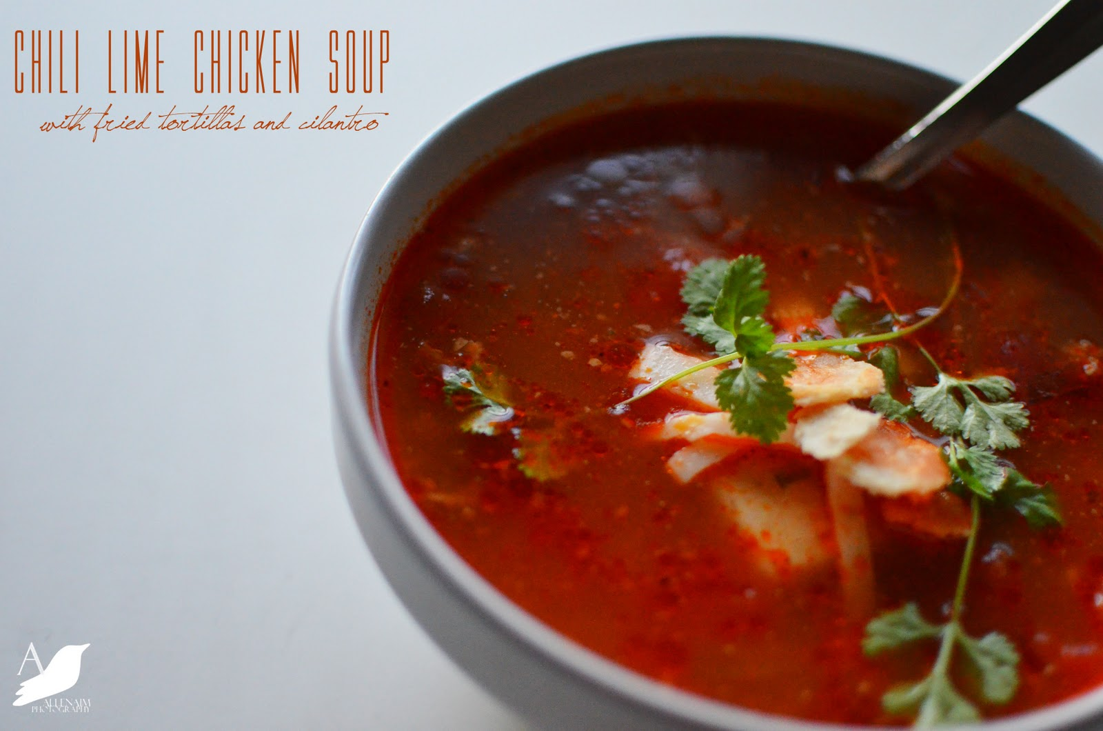 Chile Lime Chicken Soup with Fried Tortillas and Cilantro