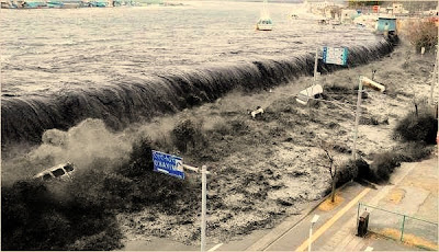 What to Do After Tsunami?