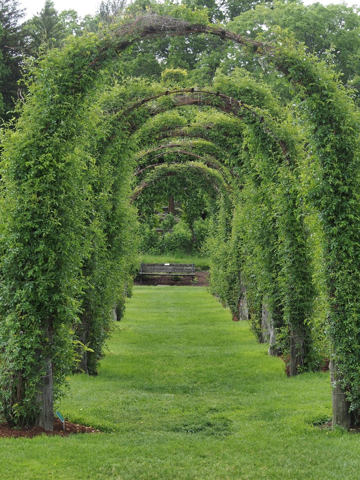 Quiet Bench, #ElizabethPark #RoseGarden 2014
