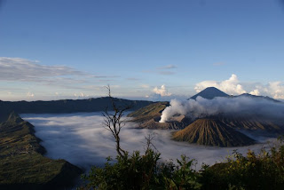 Tour Packages : Surabaya,Bromo Tour,Malang Tour,Ijen Tour,Yogyakarta Tour,Rafting,All Java Tours