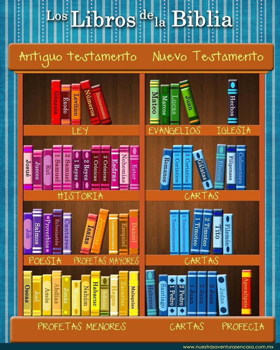 Relicoromines biblia for Partes de una biblioteca