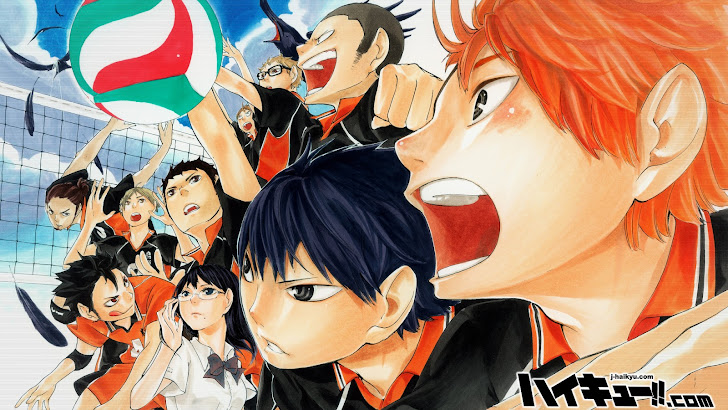 Karasuno High Haikyuu