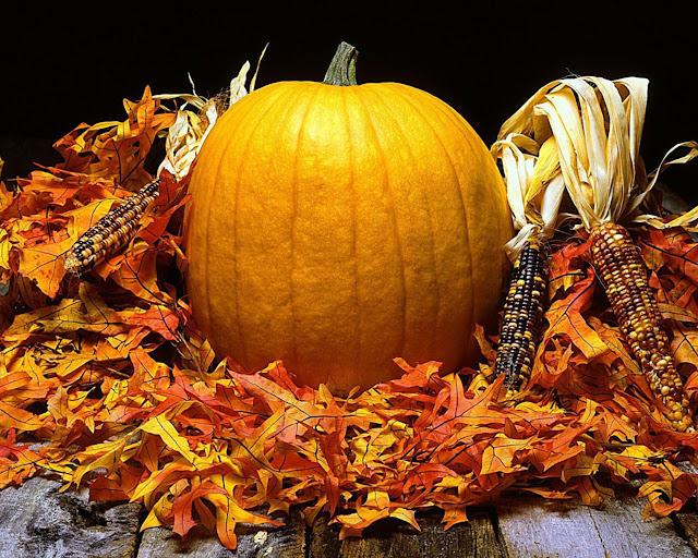 Autumn Harvest Wallpapers