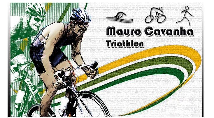 :: Mauro Cavanha ::