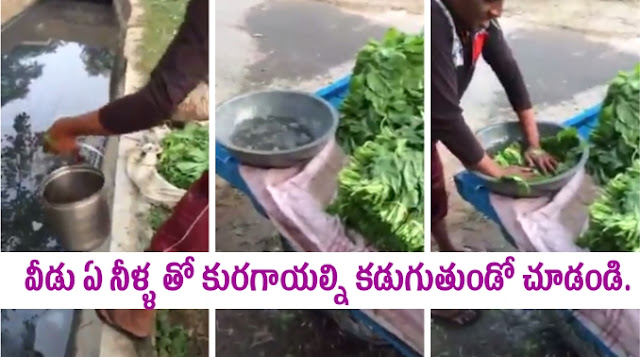 Sewage water for washing Vegetables