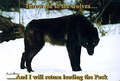 To the Wolves...