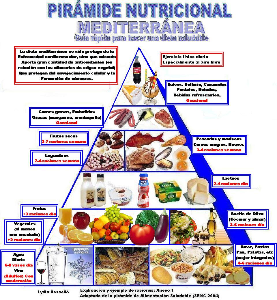 Una vez ya tenemos claro que existen varios grupos de alimentos, así