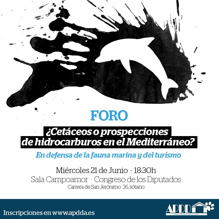 FORO: ¿Cetáceos o prospecciones de hidrocarburos en el Mediterráneo?