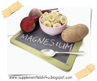 kepentingan magnesium