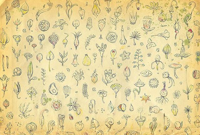 Shaun Tan End Paper Design