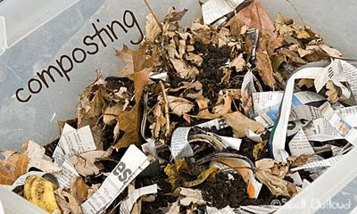 items you can compost