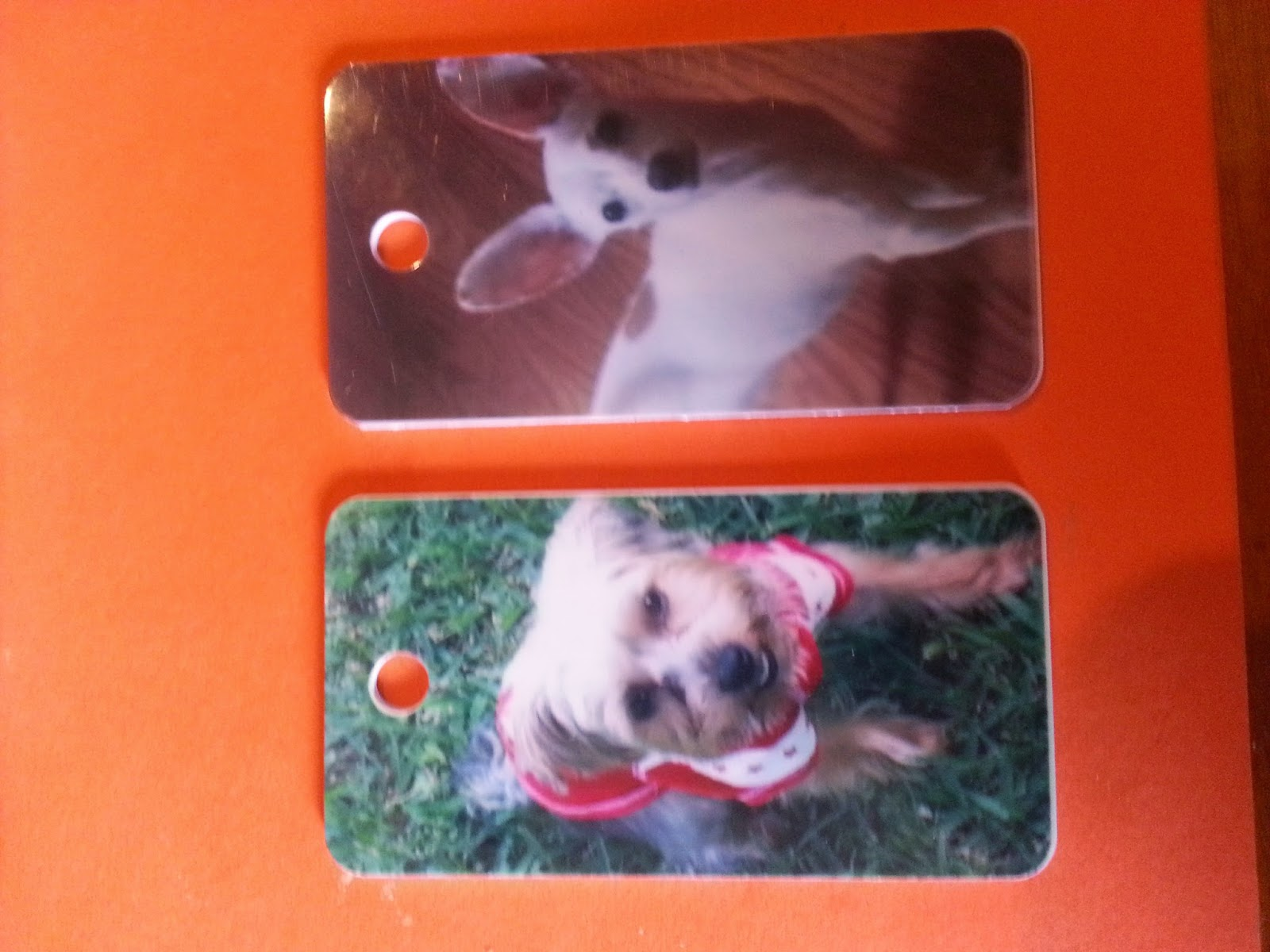 http://ramblingsofcassie.blogspot.com/2014/11/jolly-awesome-pet-tags.html