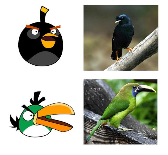 Angry Birds in Real Life 02 Burung Burung Angry Bird Di Dunia Nyata