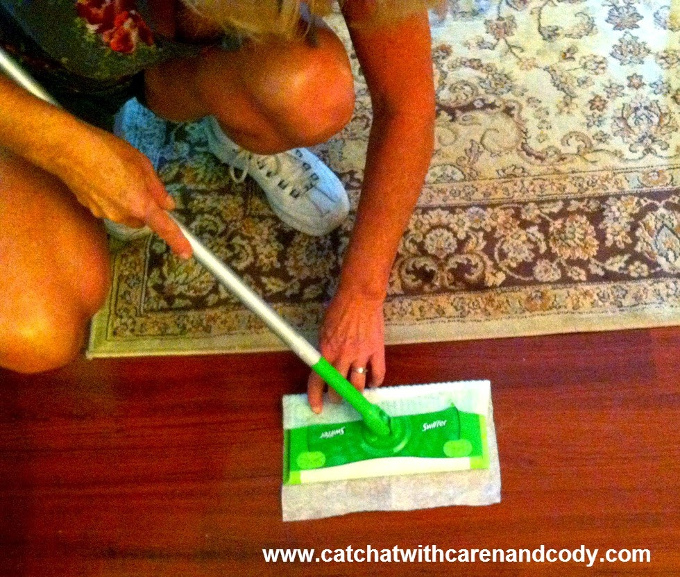 Cat Chat With Caren And Cody The Swiffer Biggreenbox