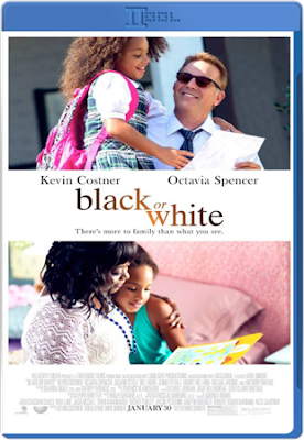 Black or White 2014 BRRip 480p 300mb ESub