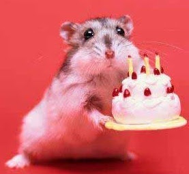 beige hamster holding a tiny birthday cake