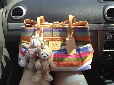 My pretty rainbow bag