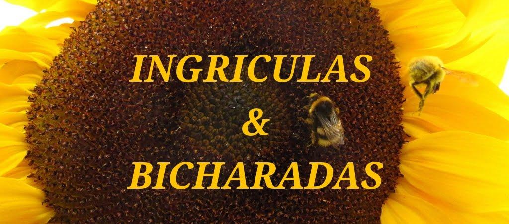 INGRICULAS E BICHARADAS
