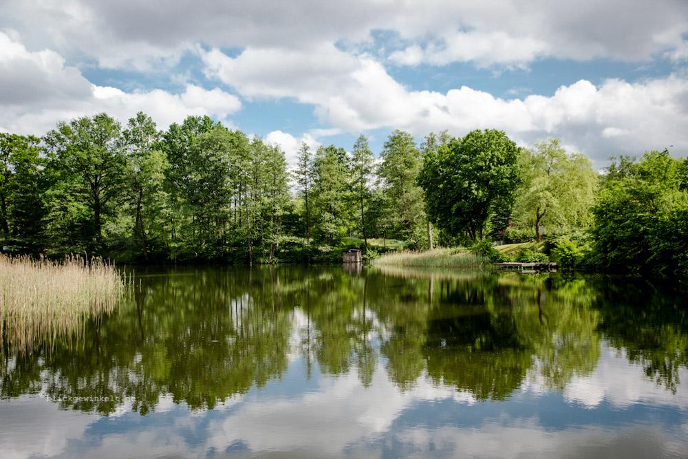 Wolken und Baumspiegelungen auf dem Wasser