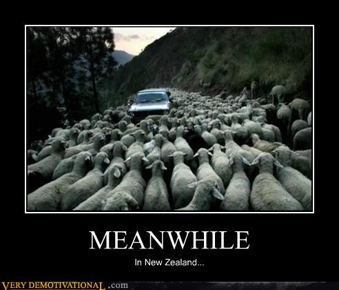Loller Funny Meme June 2012