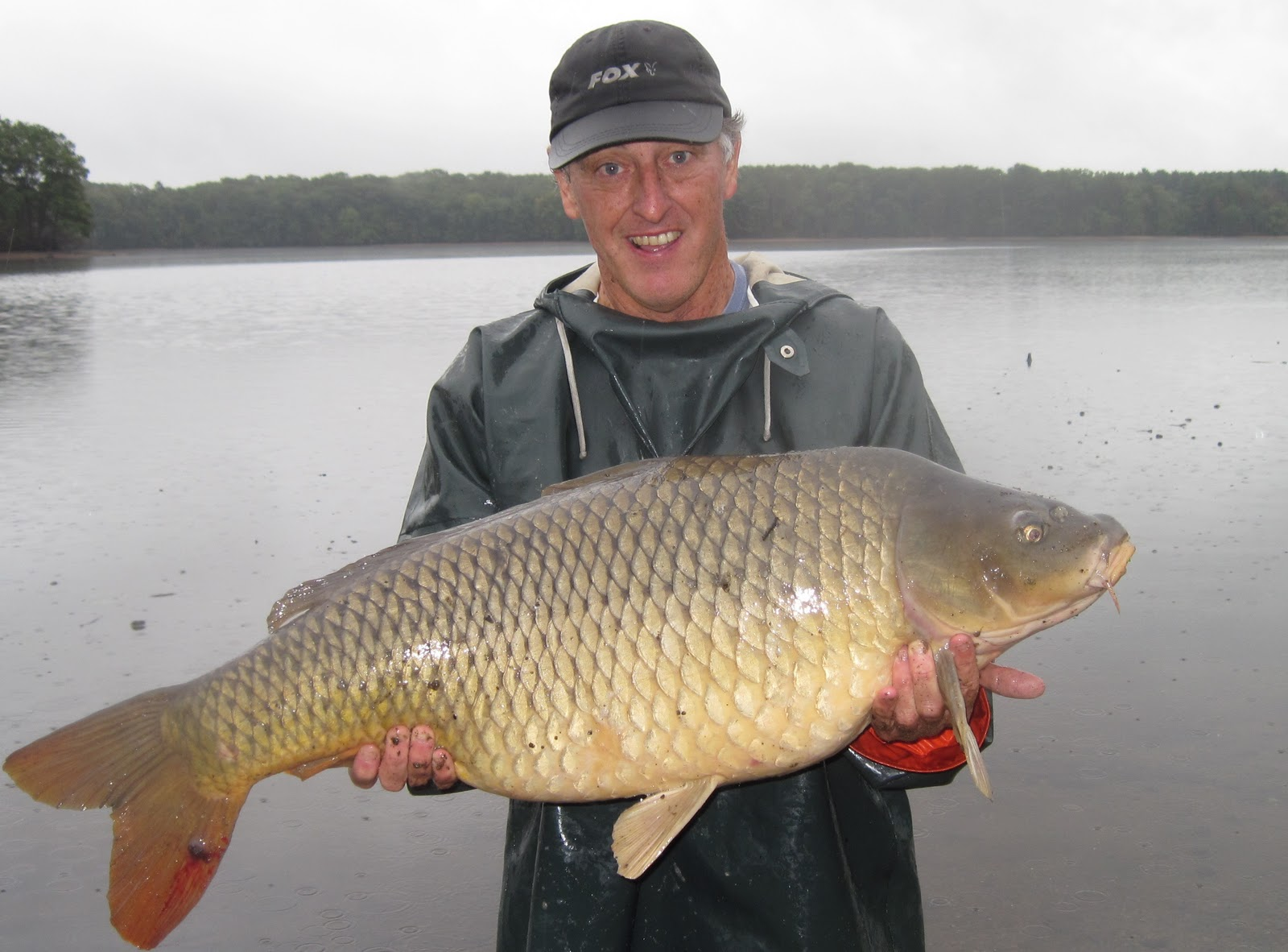 Rhode island carp fishing potential state record released for State record fish