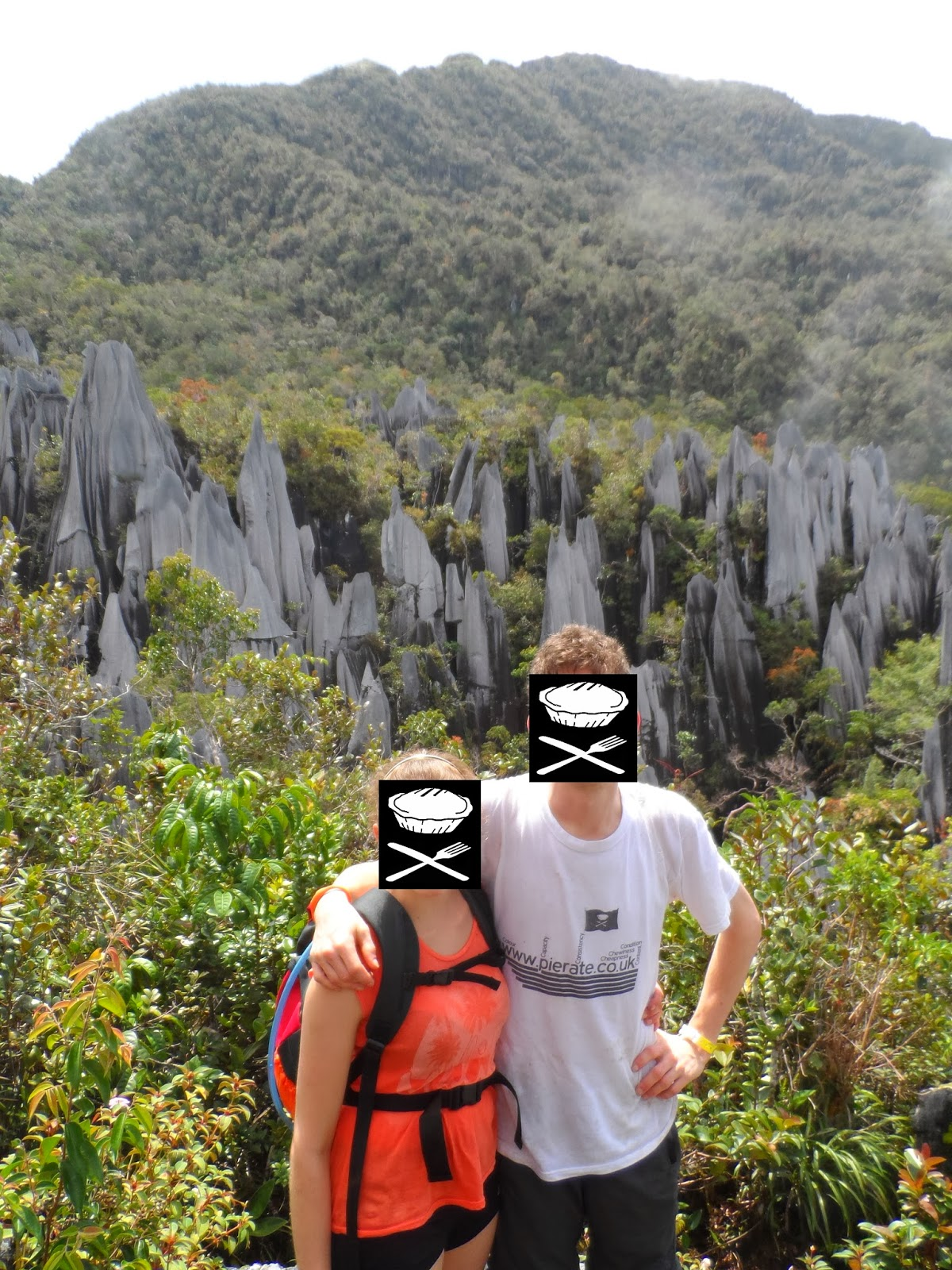 The Pinnacles Mulu National Park Borneo