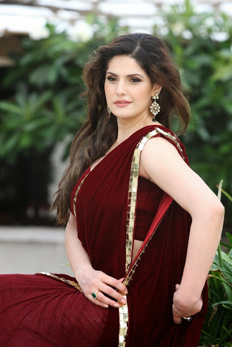 zarine khan glamorous in saree hot photoshoot