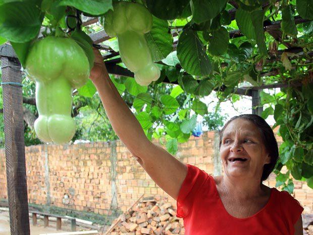 Brazilian gardener Maria Rodrigues de Aguiar Farias, 53, shows off penis-shaped passion fruit growing in her backyard.