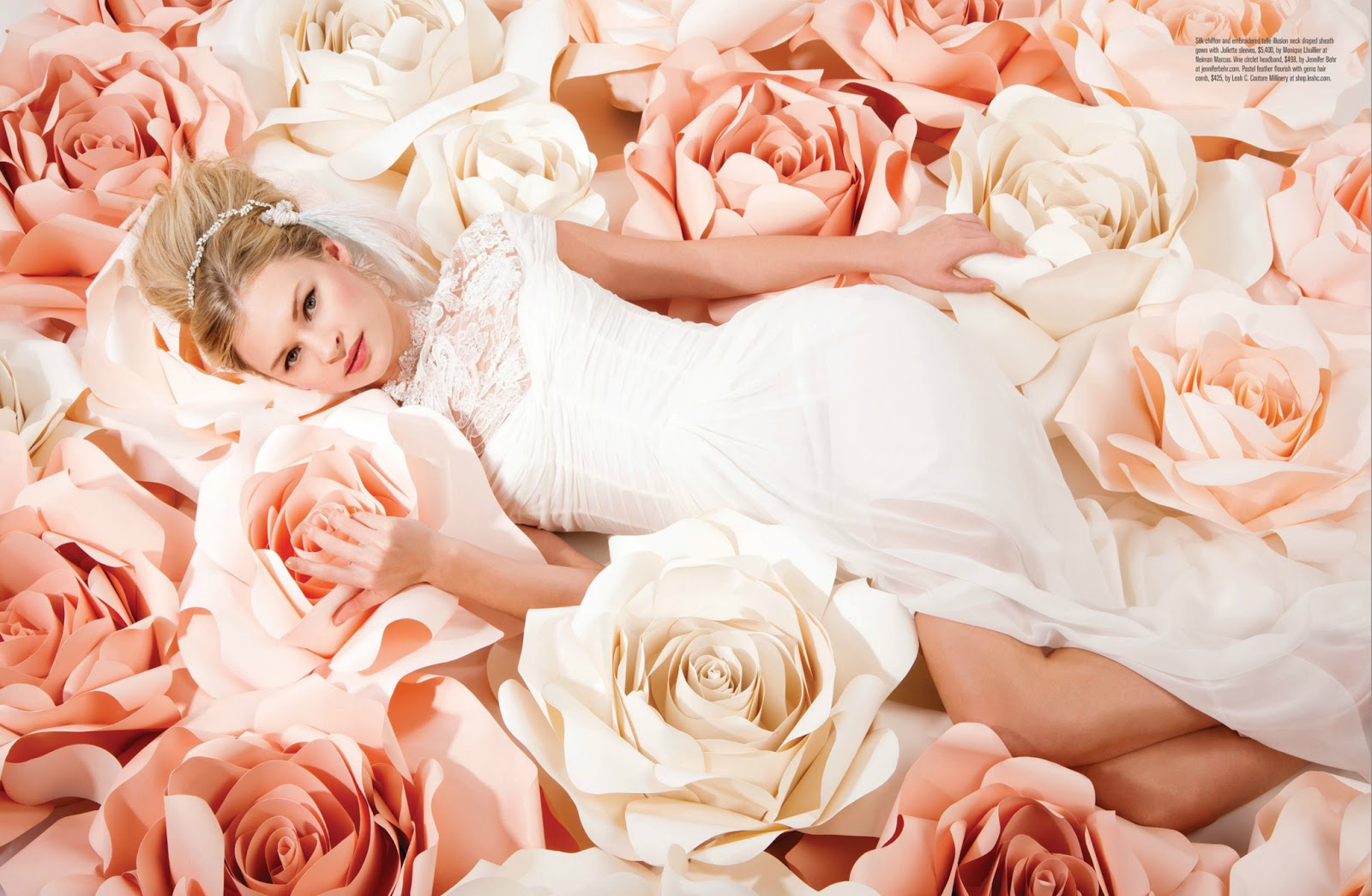 Burke pryde studio rose is a rose is a rose photography by jill watcher dhlflorist Choice Image