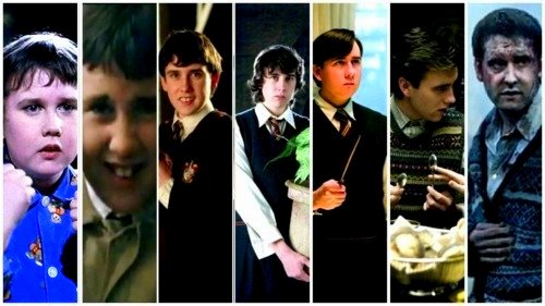 hogwarts alumni neville longbottom evolution