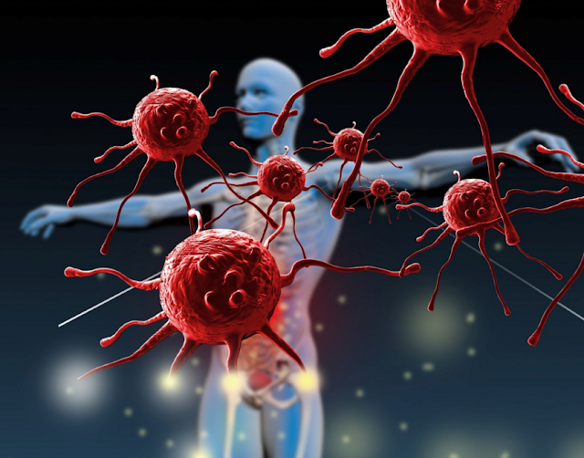 Effects of HIV AIDS on Body