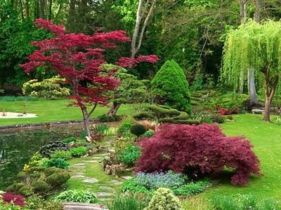 Najljepši vrtovi  Moj vrt