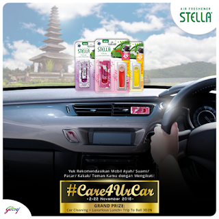 Info-Kontes-Kontes-Foto-Stella-#Care4UrCar