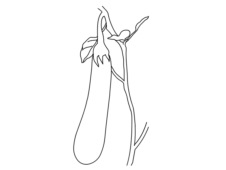 eggplant coloring pages - photo#25