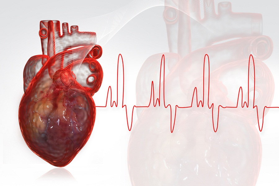 Can Sex Cause Heart Attacks? - YouBeautycom