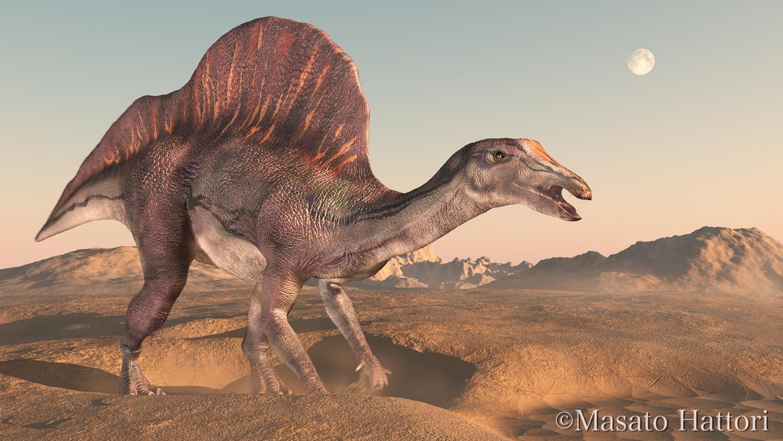 Ouranosaurus Skeleton El uranosaurio u ouranosaurus,